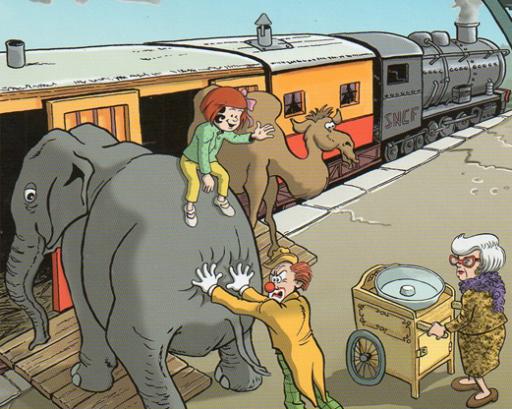Anna-elephant
